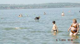 http://svalko.org/data/2014_07_15_22_00s7_pikabu_ru_post_img_2014_07_15_7_1405419342_121104650.jpg