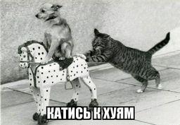 https://demotivatorium.ru/sstorage/3/2013/06/03033607989009/0306130336074186.jpg