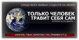 https://pp.vk.me/c540100/v540100093/9b97/WPVsDEmAzrs.jpg
