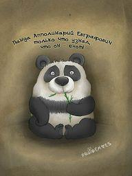 http://lh5.ggpht.com/_P0WUDq-DNak/TQK6n3tzjMI/AAAAAAAAEPA/cUiyuqVJD6A/s400/panda.jpg