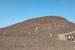 https://bi.im-g.pl/im/30/2f/19/z26410032Q,Na-plaskowyzu-Nazca-odkryto-rysunek-kota.jpg