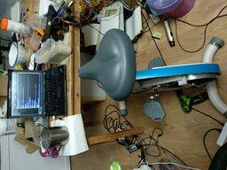 http://vperde.l29ah.blasux.ru/dump/c056432d743eb6d0793d5ef66c348616/desktop-bike.jpeg