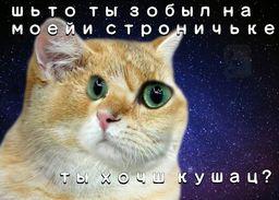 https://pp.userapi.com/c840226/v840226481/6972a/kQjR5fP9XkI.jpg