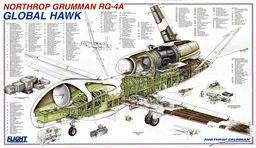http://warinform.ru/buf/RQ-4Global-Hawk/globalhawkcutaway.jpg
