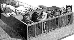 https://upload.wikimedia.org/wikipedia/commons/b/bc/Cat_piano_1883.jpg