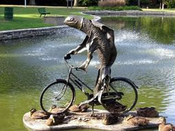 http://www.phrases.org.uk/images/a-woman-needs-a-man-like-a-fish-needs-a-bicycle.jpg