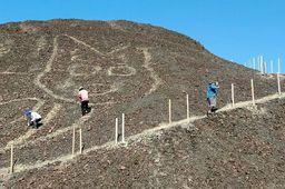 https://bi.im-g.pl/im/35/2f/19/z26410037Q,Na-plaskowyzu-Nazca-odkryto-rysunek-kota.jpg