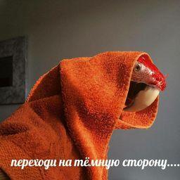 http://deaddrop.ftp.sh/wh-7gtnr5uZ3.jpg