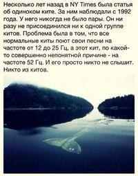http://cs543106.vk.me/v543106497/94ac/RndfMv0ok6M.jpg